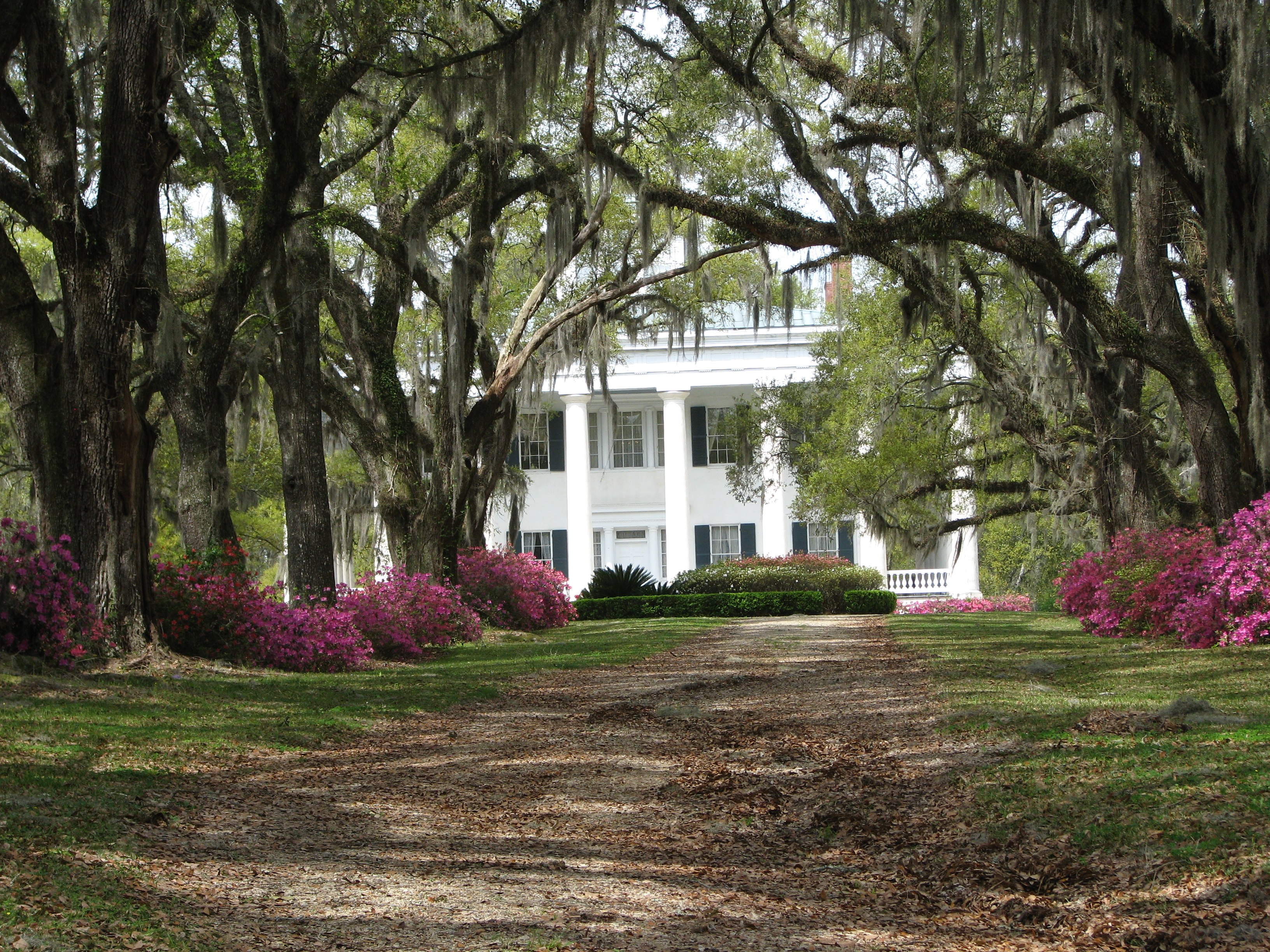 Louisiana plantations kathryn spurgeon for Antebellum plantations for sale